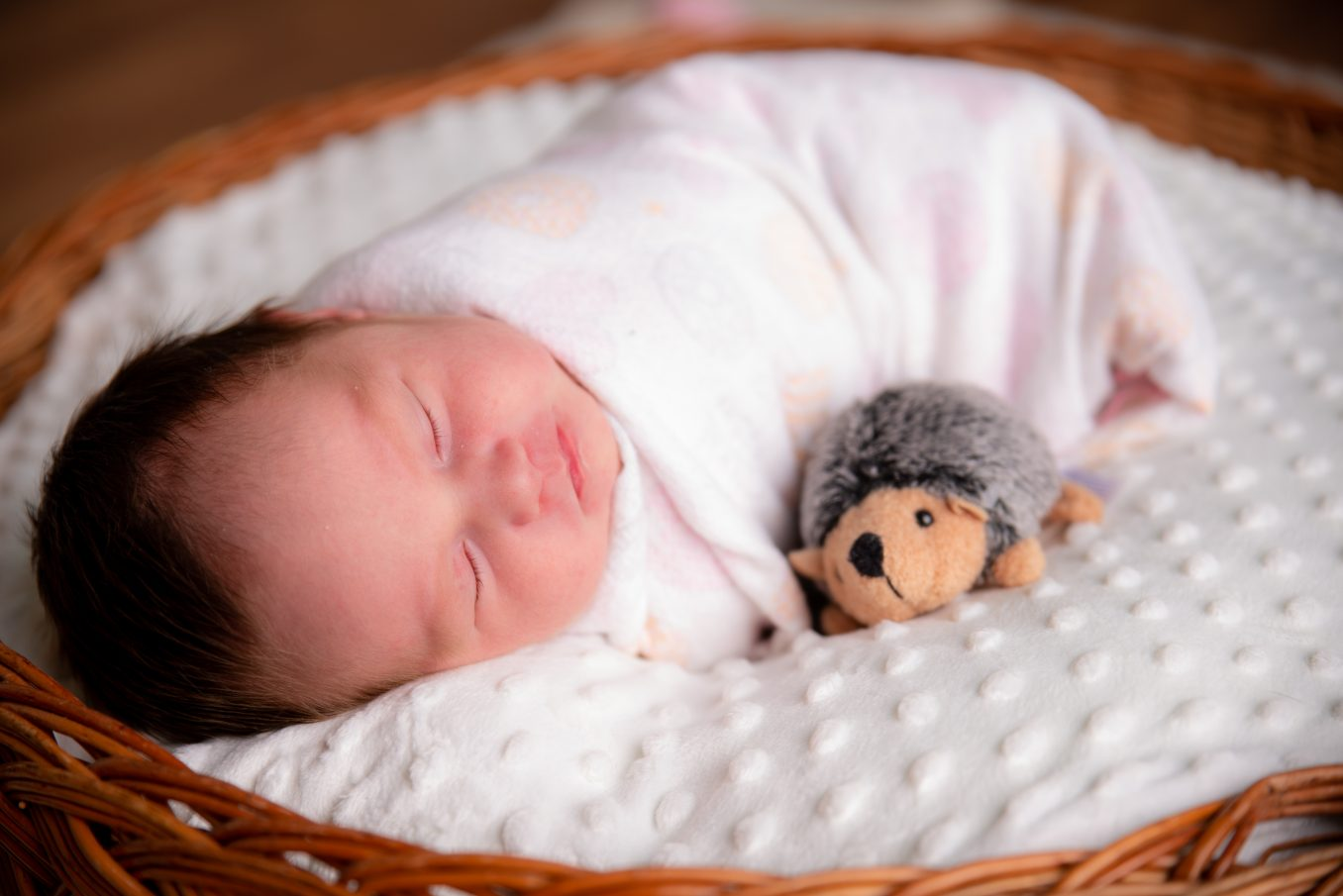 Fotografia de bebe recién nacido newborn en estudio de CDMX